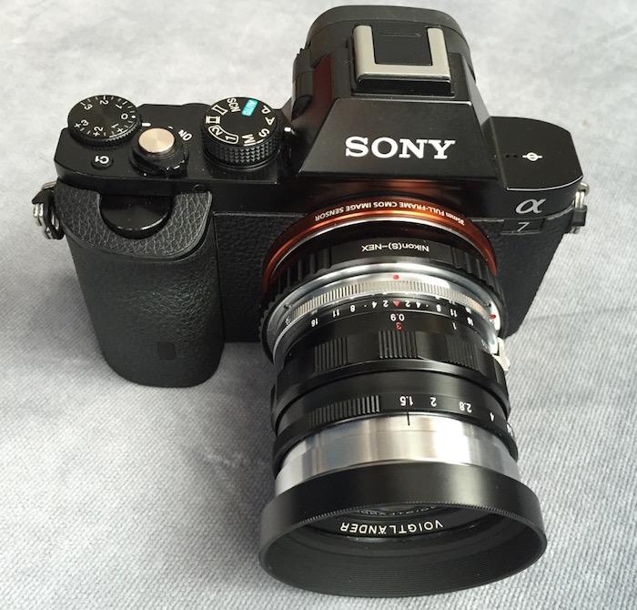 160103-Nokton50mm-SonyA7-IMG_6308.jpg